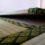 八千代市  バリアフリー薄畳新床!